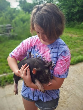 Our pig-loving friend was in heaven